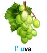 l_uva